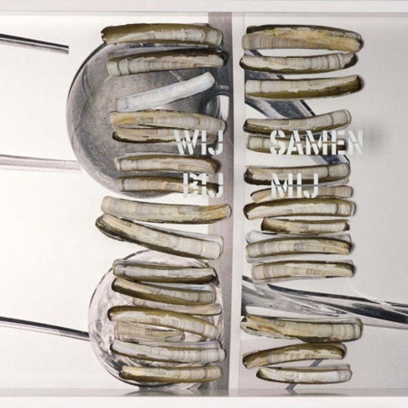 PamSchellekens,Wijsamenbijmij, 40x60x11cm,€1200,- 2